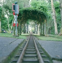TRAIN (Joseph Tarigan) Tags: garden rail bronica sq f35 105mm 400h zenza zenzanon fujipro
