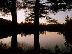 Lake At Sun Down. (dccradio) Tags: trees ny newyork reflection tree nature natural scenic adirondacks upstateny duane longpond northernny lakeduane