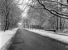 Winter in the city (JaZ99wro) Tags: film analog ilforddelta400 wroclaw mamiya645 delta400 wrocaw epsonv750 thornton2bath f0206 negfix8