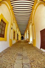 Sville 439 Reales Alczares (paspog) Tags: sevilla spain alcazar andalusia espagne sville spanien andalousie realesalczares