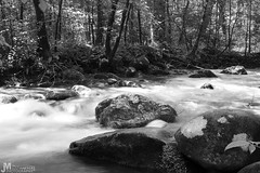 Moss Covered Rocks on Fighting Creek (J. Myers) Tags: park trees blackandwhite mountains nature water forest canon river landscape rocks long exposure hiking cove tennessee wildlife great parks explore national smoky appalachian wilderness f4l beautifullandscapes t2i justinmyersphotography