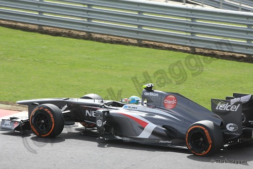 Esteban Gutierrez in Free Practice 3 at the 2013 British Grand Prix