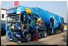 "DAF XF ""Herpa Truck 9"" (uslovig) Tags: world show fish history coral truck shark meer die box clown tag fisch lorry camion trailer oceans hai der tr brunner airbrush sommerfest lastwagen koffer daf the lkw fische xf korallen herpa lastkraftwagen lackierung 2013 offenen dietenhofen ozeane aurlieger"