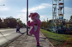 """Funfair bunny (DeSjönIs) Tags: bunny czech pentax brno funfair republic"""" """"czech """"k5"""""""