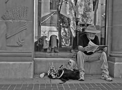 Window Seat (Sherlock77 (James)) Tags: people dog man calgary downtown streetportrait storewindow stephenavenue