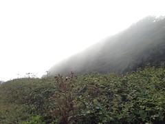 mist 1 | 31 (Callum Baigrie) Tags: sea cliff mist landscape hill railway devon redrock dawlish