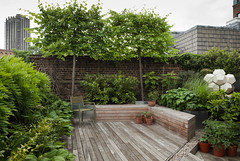 Modern, neutral colours (Outdoor Space Designed for Living) Tags: uk summer london alan modern garden early spring terrace contemporary may jackson modular late farringdon