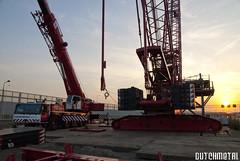 Wagenborg cranes at the A15 (dutchmetal) Tags: sunset work construction cranes 1200 kranen liebherr rupskraan hijskraan terex heavylifting a15 wagenborg mobilecrane kraanwagen cc2500 crawlercrane mobielekraan