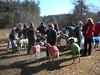 GreatBrookFarm02-19-2012008
