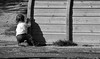 "cou-cou ("" paolo ammannati "") Tags: city children raw photographer bambini top ricordi viaggi biancoenero paoloammannati"