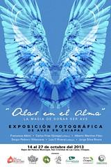 """Exposición Fotógráfica """"Alas en el Alma"""" (Jorge De Silva R) Tags: exposición fotográfica alasenelalma"""