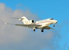Cessna 750   -   DSC_6725-copyfl (mwomack77479) Tags: airplane aircraft jet cessna750 corporatejet sugarlandmunicipalairport sigmalens50500mmos