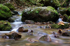 Rock'n Rock (ai3310X) Tags: nd 50mmf14 supertakumar 御岳山ロックガーデン