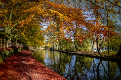 The Canal Walk (pollylew) Tags: autumn trees reflections canal saddleworth uppermill huddersfieldnarrowcanal