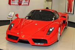 Ferrari Enzo (CA Photography2012) Tags: ca nottingham horse car photography automotive ferrari enzo supercar prancing v12 46dr hypercar graypaul