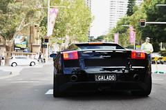 GALADO (Cody Kim Photography) Tags: park city trees black italian power wheels rich performance sydney engine australia bull exotic sound beast rims lamborghini loud rare exclusive supercar v8 v10 exhaust gallardo lambo