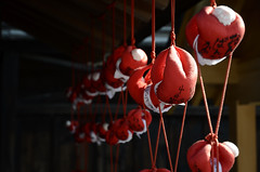 20140201 Okuhida 2 (BONGURI) Tags: nikon takayama 岐阜 gifu hida 高山 kokubunji sarubobo さるぼぼ 国分寺 hidakokubunji 飛騨国分寺 d7000 afsdxvrzoomnikkor1685mmf3556ged 醫王山