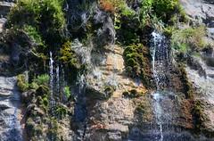 Waterfall Bay (nigelrturner) Tags: geotagged waterfall australia cliffs tasmania tas mariaisland 2014 waterfallbay