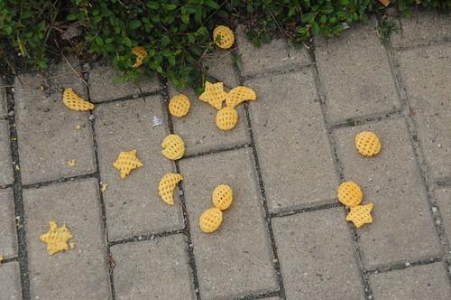 Kleine Blumen, kleine Blätter Streuen mir mit leichter Hand.....; Weimar (7)