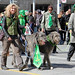 Irish Wolfhound Society