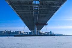 Вантовый мост через Петровский фарватер (Fedor Dzis) Tags: россия санктпетербург нева вантовый мост russia saintpetersburg neva cablestayed bridge