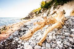Beach Peel
