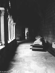 Civic Museum (Marco Di Vittorio) Tags: elephone elephonep9000 etruria italia italy lazio marcodivittorio museocivico p9000 tuscia vt viterbo museo viterbese