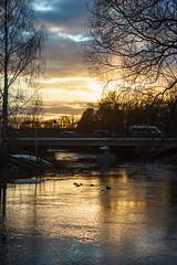 DSC04336 (+iROOT) Tags: трубеж закат мост река утки