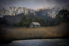 Seclusion (Diane G. Zooms---Mostly Off) Tags: landscape barns seclusion dianegiurcophotography artdigital sunrays5