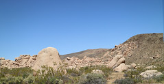April 19, 2017 (96) (gaymay) Tags: california desert gay love riversidecounty joshuatreestatepark