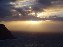 DSC01280 (Saf37y) Tags: gamriebay gardenstown mhorhead morayfirth sunset seashore sea coast clouds stormy day endoftheday seagull seaside