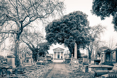 Kensal Green Cemetery-2.jpg (Colin Dorey) Tags: bw blackwhite monochrome blackandwhite kensington rbkc kensingtonchelsea london uk ladbrokegrove northkensington march 2017 winter building architecture structure harrowroad cemetery kensalgreencemetery w104ra westlondoncrematorium