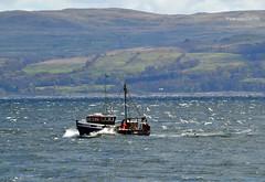 Mo Mhairi (Zak355) Tags: rothesay isleofbute bute scotland scottish momhairi tt87 fishingboat boat riverclyde
