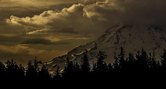 rainier morning (David Montesino) Tags: longbranchwashington mountrainier sunrise tacoma washington usa