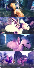 The Chocobo Party (ColeMarie Soleil (Cole's Corner)) Tags: fantasy faire 2017 yukio ida sharni azalee aelva colemarie soleil chocobos mount dawns promise
