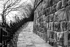 길 / way (Daegeon Shin) Tags: nikon d4 nikkor 55mm 55mmf28 way road camino bw wall 담 벽 muro shadow sombra tree arbol jinju corea korea 니콘 니콘렌즈 길 흑백 그림자 나무 진주 경남 진주성