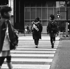 170320_ZenzaBronicaS2_011 (Matsui Hiroyuki) Tags: zenzabronicas2 zenzanon150mmf35 fujifilmneopan100acros