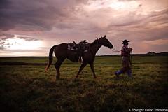 cowboy-roundup (cheroyori) Tags: cowboy roundup roping lariat vaccination cows western horses branding rain rainbow mud teamwork ranch calf stetson storm sunrise work task friendship outdoors