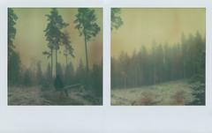 Listen to the silence2 (Maija Karisma) Tags: polaroid instant pola littlebitbetterscan tzartistic expiredfilm sx70 roidweek2017 diptych