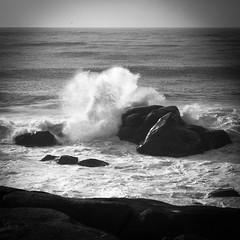 Abraço / Hug (Francisco (PortoPortugal)) Tags: 0762017 20160305fpbo2523 mar sea atlântico atlanticsea fozdodouro porto portugal portografiaassociaçãofotográficadoporto franciscooliveira