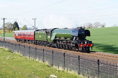 60103 Flying Scotsman (tombrown3189) Tags: 5z72 60103 flying scotsman northampton millton malsor wcml loop gresley a3 pacific sun light steam train engine move heading south england world famous countryside 11042017