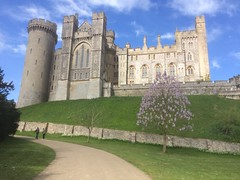 Arundel Castle in Arundel Sussex England. (Bennydorm) Tags: grass green chateaufort schloss castello castillo inglaterra inghilterra angleterre iphone5s magnificent bluesky trees wonderful beautiful clouds sky europe uk gb britain england awesome grandiose historic architecture building castle sussex arundel