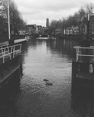 #utrecht (deepskyobject) Tags: instagramapp square squareformat iphoneography uploaded:by=instagram moon