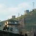 Plantações de chá nas montanhas de Rize