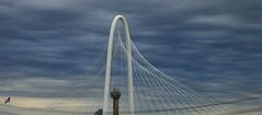 Margaret Hunt Hill Bridge, Dallas, Texas (blafond) Tags: bridge pont engineering margarethunthill cables icone icon calatrava dallas texas usa