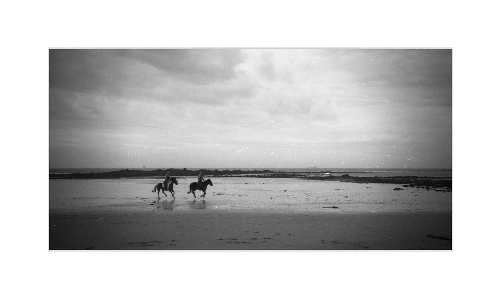 Gallop [Olympus 35RC]