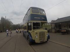1954 DAMILER CVG6 (Uktransportvideos82) Tags: