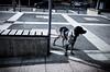 Chasse gardée dans la France de la chasse ouverte (www.danbouteiller.com) Tags: france french français rouen normandie normandy city ville urban urbain street streetscene streetlife streets streetshot streetphoto streetphotography photoderue photo rue dog chien caine ricoh ricohgr ricohgr2 ricohgrii gr gr2 grii