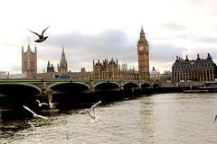 Big Ben (BryonyCp) Tags: big ben bigben londoneye london eye thames pogeons flying gloomy bridge tower clock