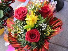 Roses (irio.jyske) Tags: roses colors bouquet stilllife bundle nature townscape sigma canon tallin estonia